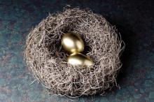 Nest Egg3.gif