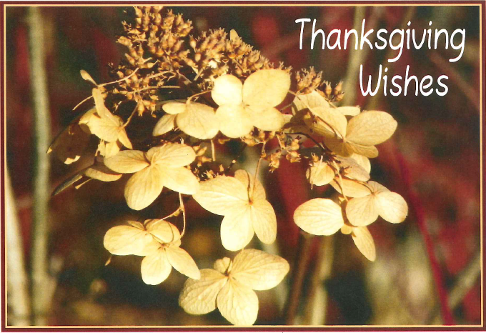 ThanksgivingWishes